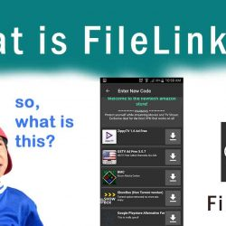 What is FileLinked