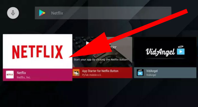 NetFlilx for Android TV via Play Store