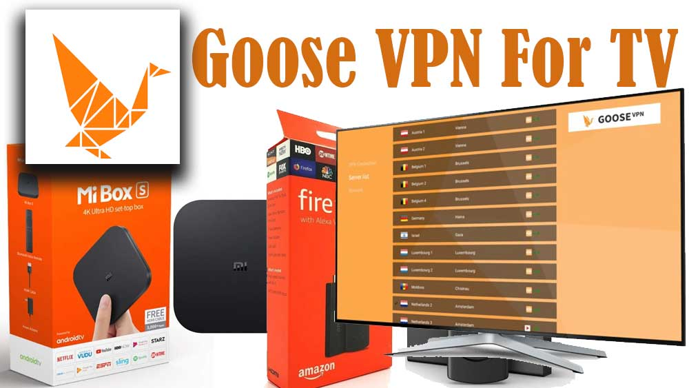Goose VPN for Android TV