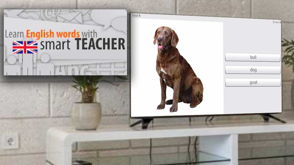 Learn English Words with Smart Teacher using TV