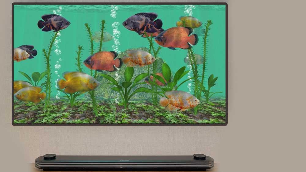 Android TV Aquarium App