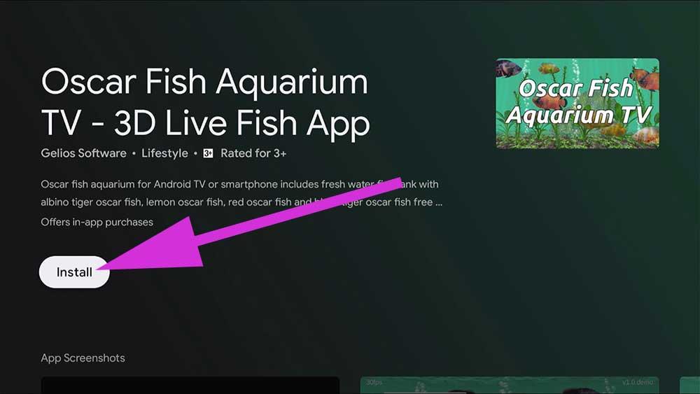 Install Oscar Fish Aquarium